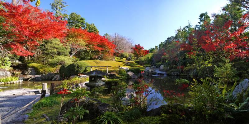 妙心寺/Myōshin-ji
