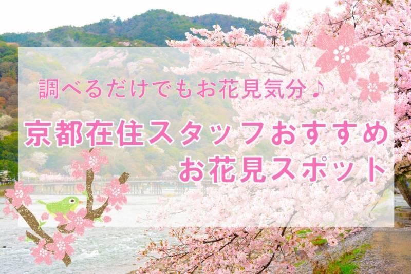 嵐山おすすめ桜スポット / SAKURA info in Arahiyama