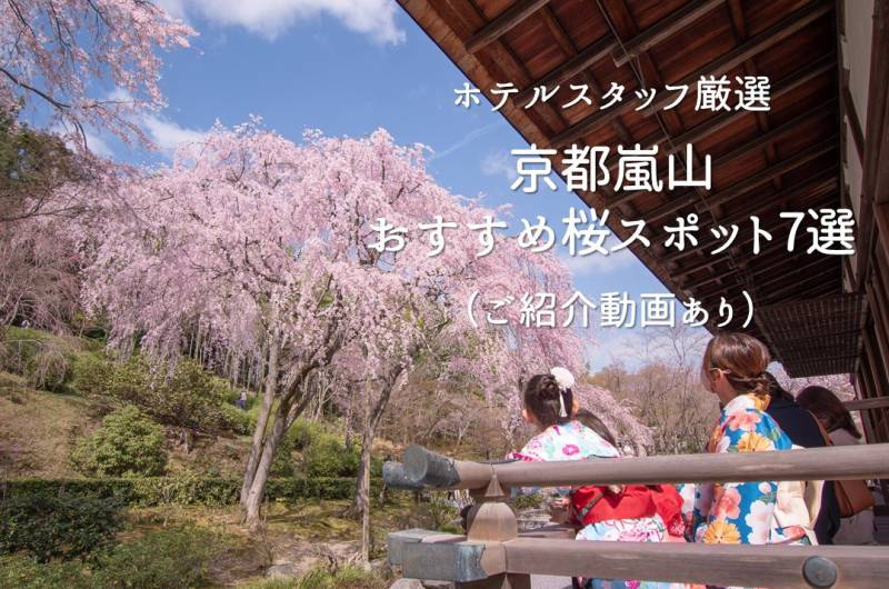 現地ホテルスタッフが厳選「嵐山桜スポット7選」// Must Visit 7 SAKURA Spots in Kyoto Arashiyama